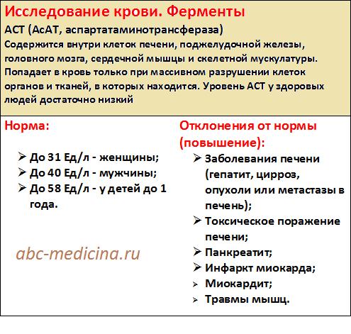Норма АСТ в анализе крови